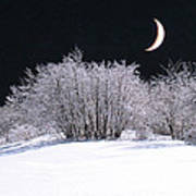 Snow In The Moonlight Art Print by Giorgio Darrigo