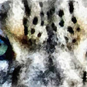 Snow Leopard Eyes Art Print