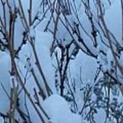 Snow Load Art Print