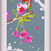 Snow On Cherry Blossom Art Print by Wendy Wiese