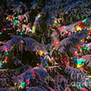 Snow On The Christmas Tree 1 Art Print