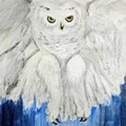 Snow Owl In Flight Art Print