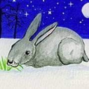 Snow Rabbit Art Print