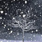 Snow Art Print