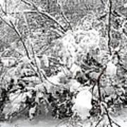 Snow Scene 4 Art Print