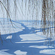 Snow Shadows I Art Print