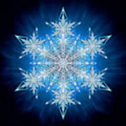 Snowflake - 2012 - A Print by Richard Barnes