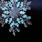Snowflake In Window 20471 Art Print