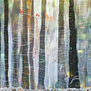 Snowing In The Ice Forest Art Print