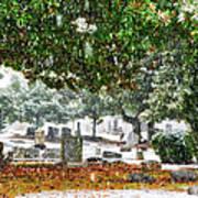Snowy Day At The Cemetery - Greensboro North Carolina Print by Dan Carmichael