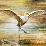 Snowy Egret Dancing  Art Print