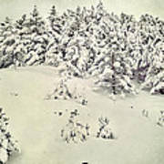 Snowy Forest Vintage Art Print