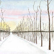 Snowy Lane Art Print by Arlene Crafton