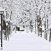 Snowy Lane In Winter Park Art Print