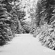 Snowy Mountain Road - Black And White Art Print