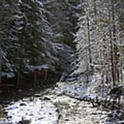 Snowy Oregon Stream Art Print