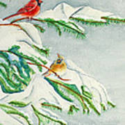 Snowy Pines And Cardinals Art Print
