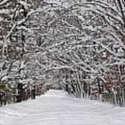 Snowy Road - 3 Art Print