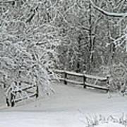 Snowy Winter Art Print