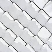 Snowy Wire Netting Art Print