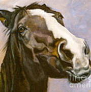 Hot To Trot Art Print