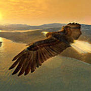 Soaring Eagle Art Print by Ray Downing