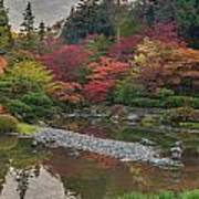 Soaring Fall Colors In The Arboretum Art Print