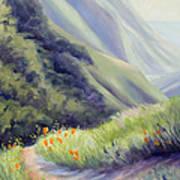 Soberanes Canyon  Art Print