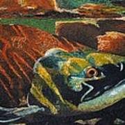 Sockeye Art Print