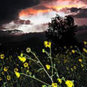 Socorro Sunset Art Print