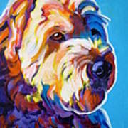 Soft Coated Wheaten Terrier - Max Art Print
