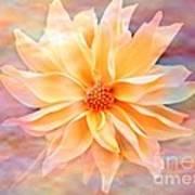 Soft Delightful Dahlia Art Print