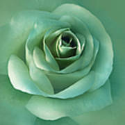 Soft Emerald Green Rose Flower Art Print by Jennie Marie Schell