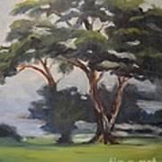 Soft Trees Art Print