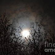 Solemn Winter's Moonlight Art Print