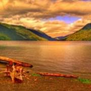 Solitude On Crescent Lake Art Print