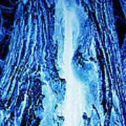 Solo Blue Art Print