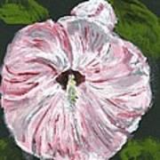 Son Of A Flower Art Print