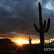 Sonoran Desert Rays Of Hope Art Print by Bob Christopher