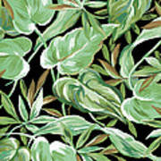 Soothing Tropics Art Print