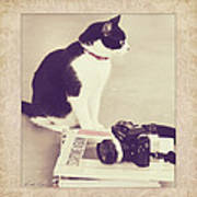 Sophie And The Camera Art Print