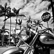 South Beach Cruiser Art Print