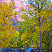 South Campground In Zion Np-ut Art Print