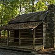South Carolina Log Cabin Art Print