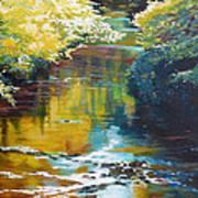 South Fork Silver Creek No. 3 Art Print
