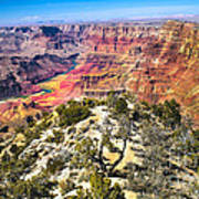 South Rim From The Butte Art Print by Robert Bales