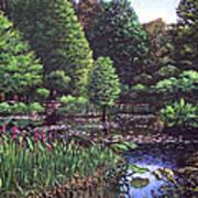 Southampton Hillier Gardens Art Print