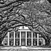 Southern Class Monochrome Art Print