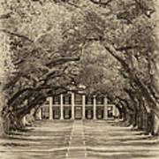 Southern Time Travel Sepia Art Print
