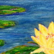 Sparking Lillies Art Print